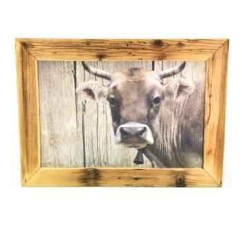 Altholz-Bilderrahmen- Kuh | Bilderrahmen aus Antikholz mit Kuh-Bild online kaufen bei Allgaier-Allerlei®