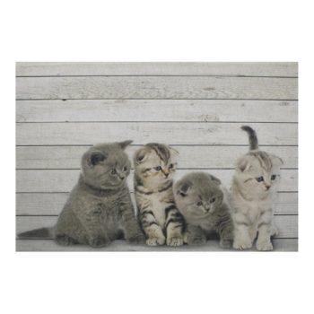 Fußmatte Babykatzen - groß